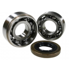 BEARING SET crankshaft - FOR STIHL 024 - 026 - MS 240 - MS 241- MS 260 - MS 261